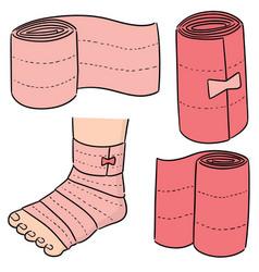 Set medical bandage vector