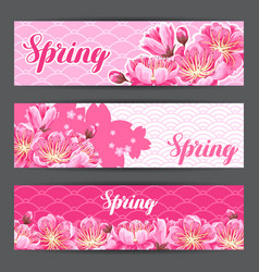 spring banners with sakura or cherry blossom vector image vector image
