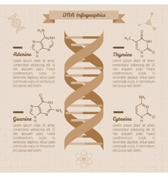 vintage medical infographics vector image