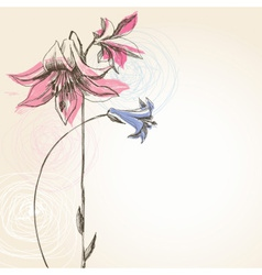 Blooming lily flower greeting card vector image