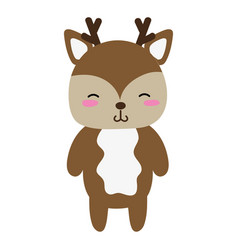 Colorful cute and shy deer wild animal vector