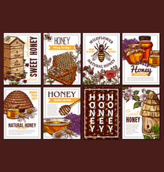 eco bee honey hand drawn poster templates vector image