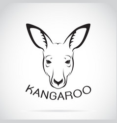 kangaroo head on white background wild animals vector image