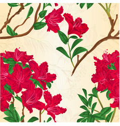 Red rhododendron branch vintage vector