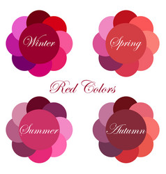 Seasonal color analysis palettes vector