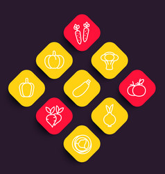 Vegetables icons set courgette carrot broccoli vector