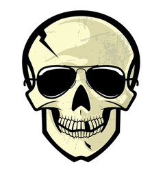 Skull with sunglasses vector