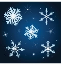 snowflake winter set illustration vector image