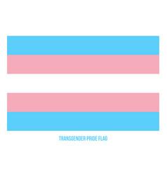 Transgender pride flag designed with correct vector