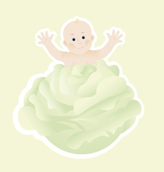 cabbage patch baby vector image