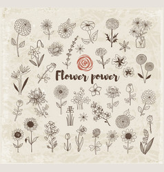 Set of doodle sketch flowers on vintage paper vector