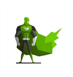 Superhero In Green Suite vector