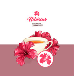 tea card with hawaiian hibiscus red fragrance vector image