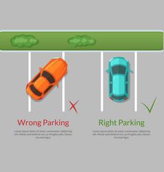 wrong and right parking cars on the parking vector image