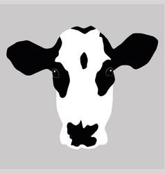 a portrait of a cow vector image