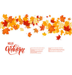 autumn maple leaves decor vector image