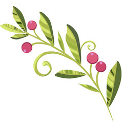 branch of cranberries with berries vector image