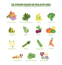 Folate vector