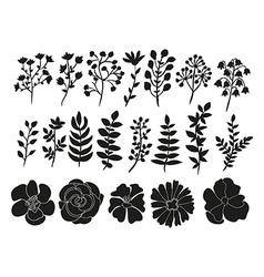 hand drawn floral elements set vector image
