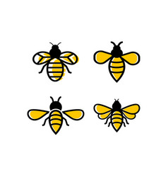 Bee icon design template isolated vector
