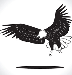 Eagle 4 vector