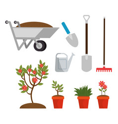 gardening elements and tools design vector image