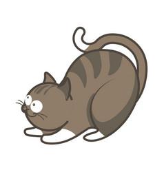 cartoon playful kitten going to jump vector image vector image