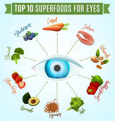 Best food for eyes vector