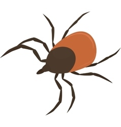 Brown tick vector