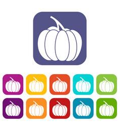 Pumpkin icons set vector