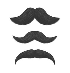 realistic detailed 3d black fake mustaches vector image