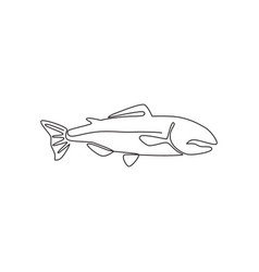 single continuous line drawing large salmon vector image
