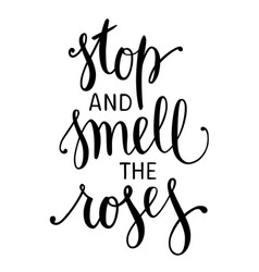 stop and smell the roses inspirational quote vector image