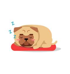 cute cartoon pug dog character sleeping on red mat vector image vector image
