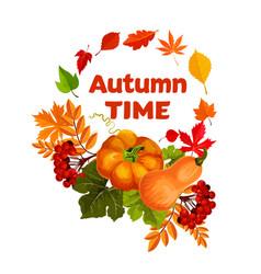 Autumn harvest pumpkin and leaf poster design vector