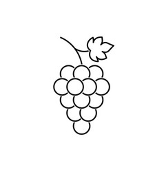 bunch grapes fruit with leaf icon vector image