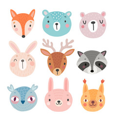 Cute woodland characters bear fox raccoon vector