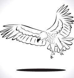 eagle 5 vector image vector image