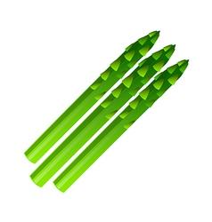 Icon asparagus vector