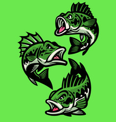 Set angry cartoon largemouth bass fish vector