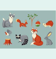 Set woodland animals and plants vector