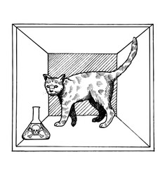 shroedinger cat in box poison engraving vector image