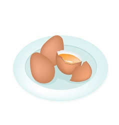 An Fresh Eggs in White Plate vector image