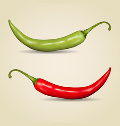 set of chilli peppers vector image