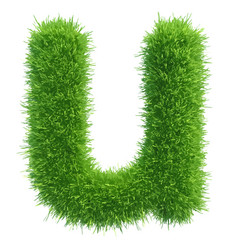 small grass letter u on white background vector image