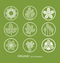 set abstract organic emblem outline vector image vector image