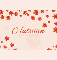 autumn background with leaves red color greeting vector image
