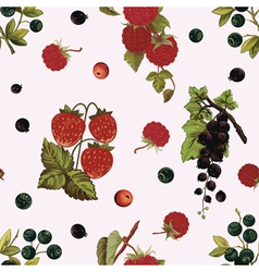 Background with berries vector image