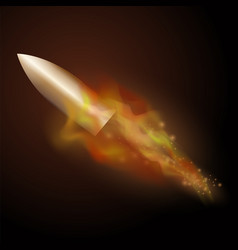 burning metal bullet with fire flame vector image