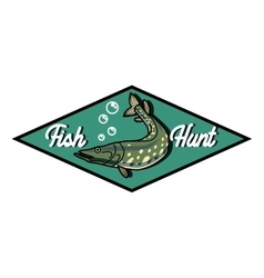 Color vintage fishing emblem vector image